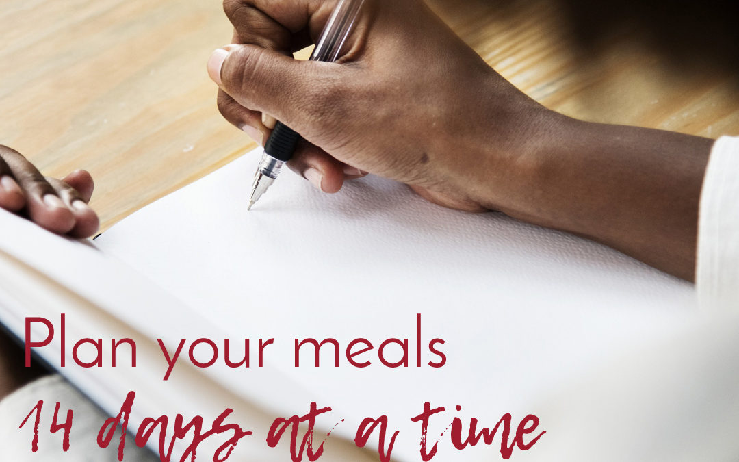 Vegan meal plan template: do it 2 weeks at a time