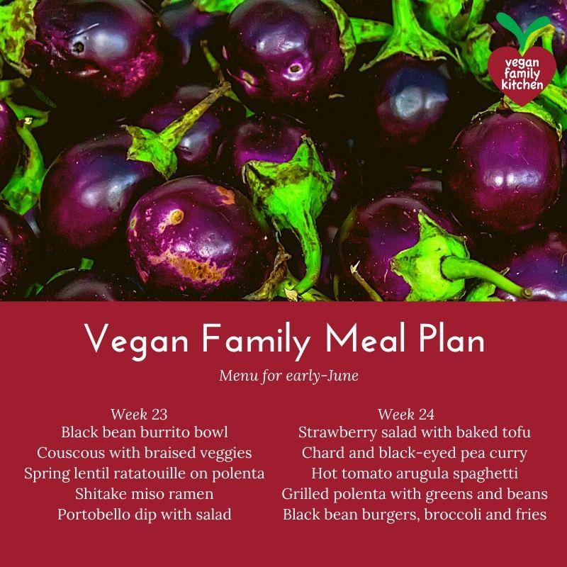Vegan Family Meal Plan - weeks 09-10