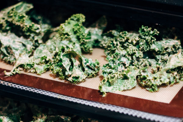 Should I buy a dehydrator? Vegan raw kale chips by Sprouting Zen