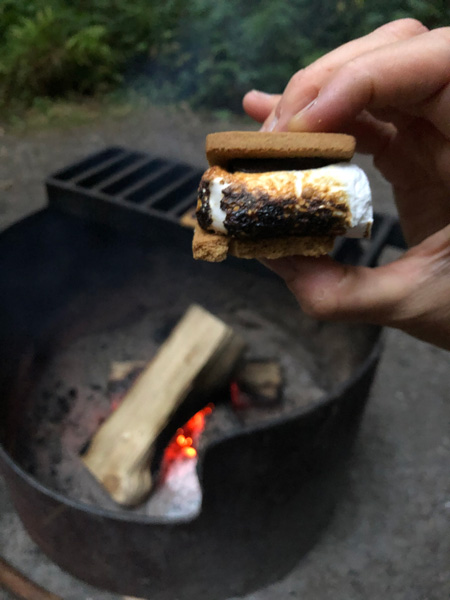 Vegan camping food - Vegan s'mores